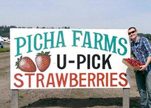 Picha-Farms
