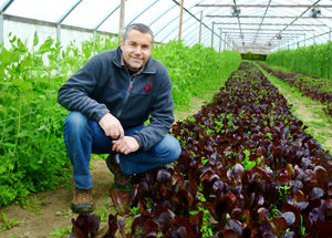 Willie-Greens-Organic-Farm