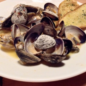 wildfin clams