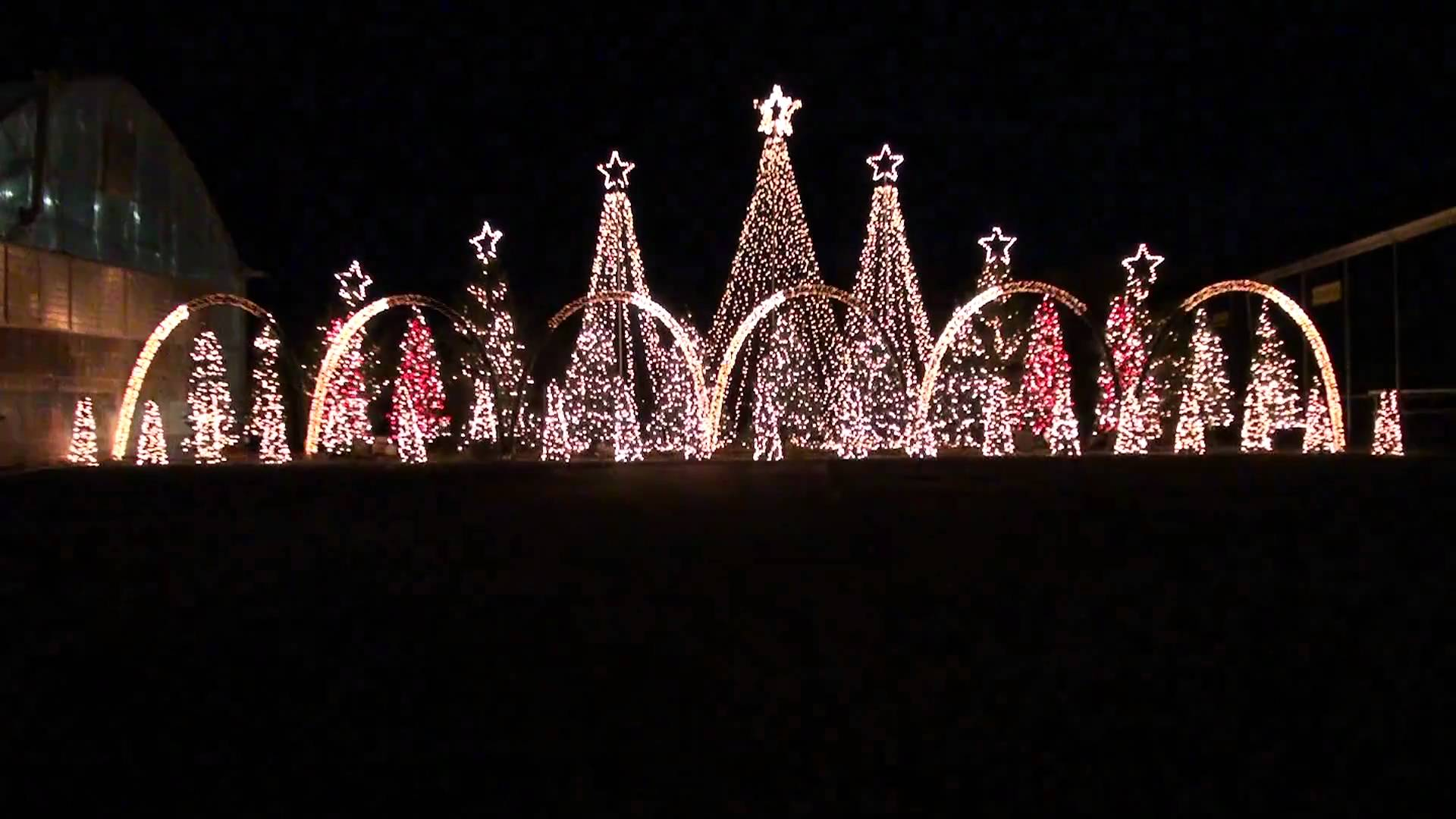 Christmas Light Displays in Tacoma, Renton and Beyond - WildFin ...